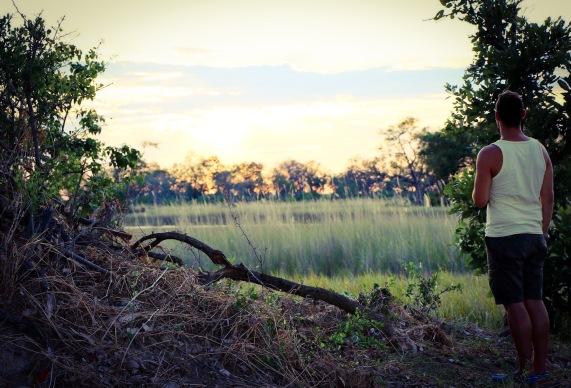 Sunset in the Okavango Delta.